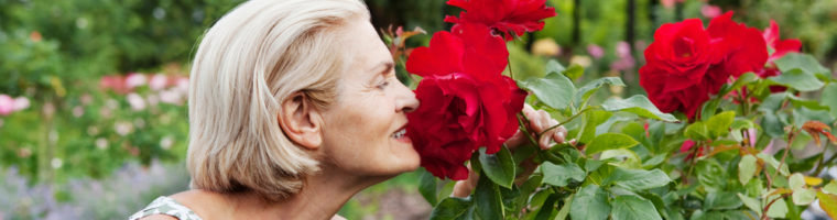 Looking for Fun Activities for Seniors to Do This Spring?
